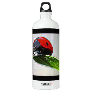 Massachusetts Ladybug Water Bottle