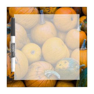Massachusetts, Salisbury, pumpkins, autumn Dry Erase Board