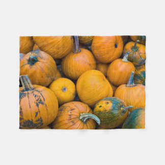Massachusetts, Salisbury, pumpkins, autumn Fleece Blanket