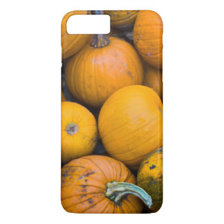 Massachusetts, Salisbury, pumpkins, autumn iPhone 8 Plus/7 Plus Case