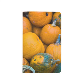 Massachusetts, Salisbury, pumpkins, autumn Journal