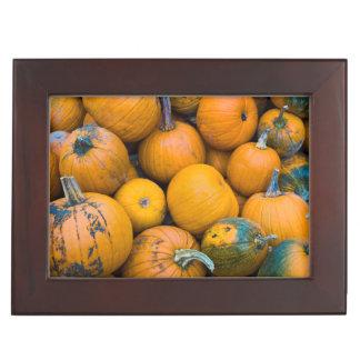 Massachusetts, Salisbury, pumpkins, autumn Keepsake Box