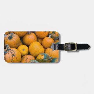 Massachusetts, Salisbury, pumpkins, autumn Luggage Tag