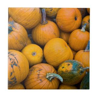 Massachusetts, Salisbury, pumpkins, autumn Tile