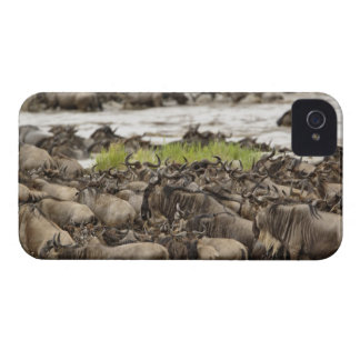 Massive Wildebeest herd during migration, iPhone 4 Cover