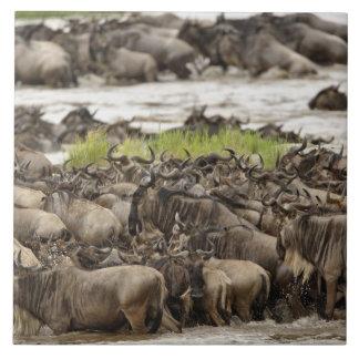 Massive Wildebeest herd during migration, Large Square Tile