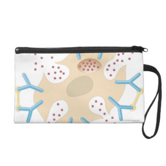 Mast Cell Releasing Histamine Wristlet Purses