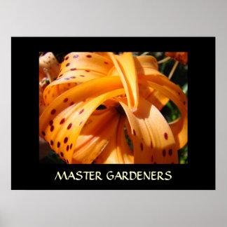 MASTER GARDENERS Art Prints TIGER LILIES Artwork Poster