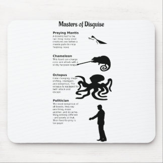 master-of-disguise-2014-02-01 mouse pad