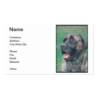 Mastiff Business Card