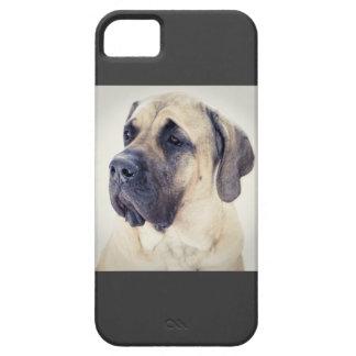 Mastiff iPhone5 Case