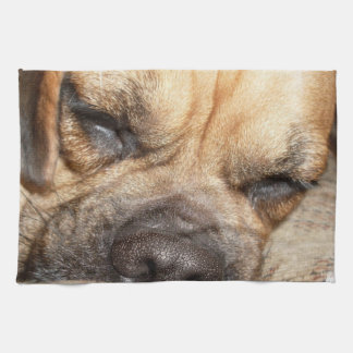 Mastiff Puppy Kitchen Towel