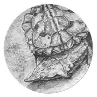Matamata turtle plate