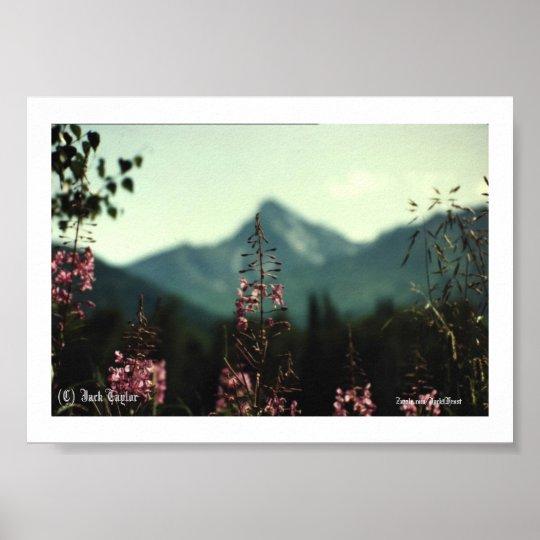 Matanuska Peak and Fireweed #01, (C) Jack Taylo... Poster