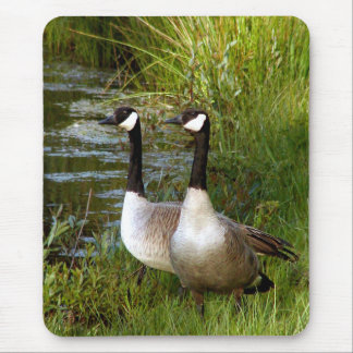 Mates for life mouse mat