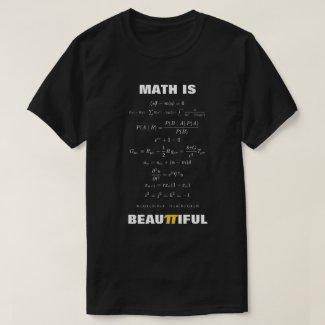 Math is Beautiful 11 Mathematical Equations T-Shirt