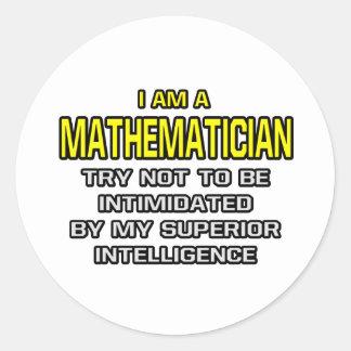 Mathematician...Superior Intelligence Round Stickers