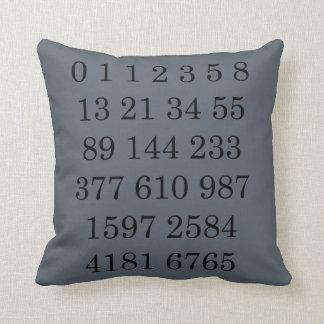 Mathematics Science Gift for Geek Math Pillow Throw Cushion
