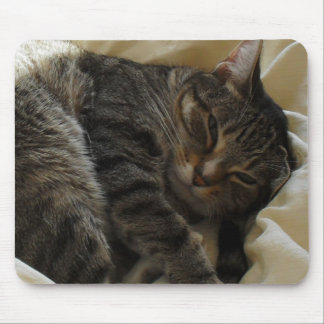 Matilda in Bed Mouse Mat