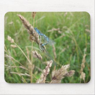 Mating Damselflies at Chimney Meadows Mouse Pad
