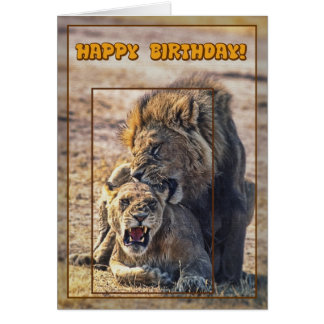 Mating lions card