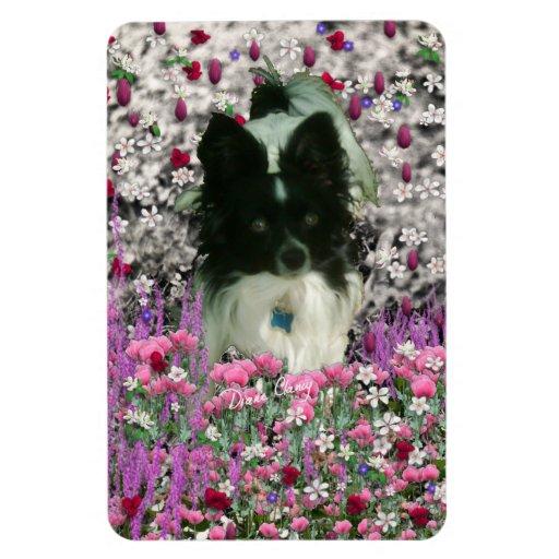 Matisse in Flowers - White & Black Papillon Dog Rectangular Magnet