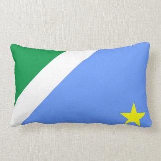 Mato Grosso do Sul flag Brazil province symbol Lumbar Cushion
