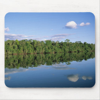 Mato Grosso State, Amazon, Brazil. Forested Mouse Pad