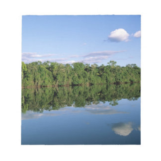 Mato Grosso State, Amazon, Brazil. Forested Notepad