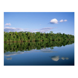 Mato Grosso State Amazon Brazil Forested Postcards