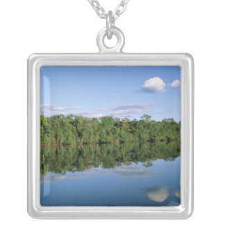 Mato Grosso State, Amazon, Brazil. Forested Silver Plated Necklace