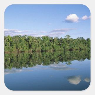 Mato Grosso State, Amazon, Brazil. Forested Square Sticker