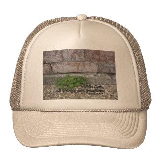 Matthew 19:26 hats