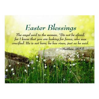 Matthew 28:5-6 He is not here He has Risen, Easter Postcard