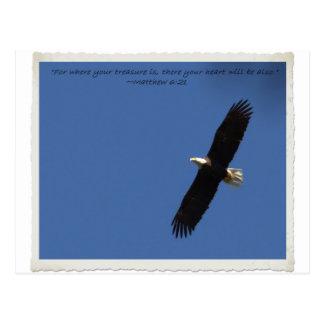 Matthew 621 Eagle w frame.jpg Postcard