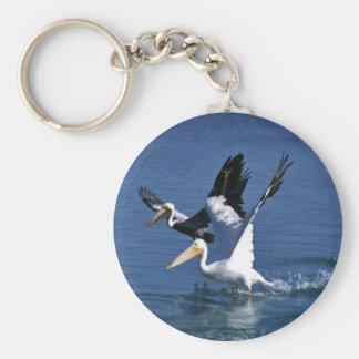 Mature and immature white pelican keychain