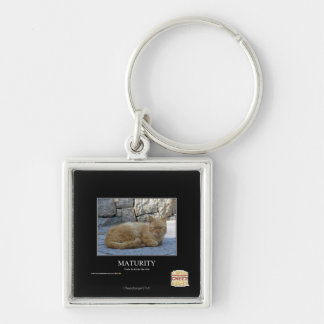 Maturity Silver-Colored Square Key Ring