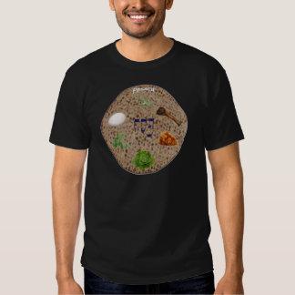 Matzo Seder Plate T-shirts