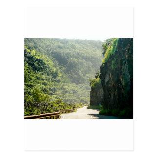 Maui Hi Beach Forest trail 2014 Postcards