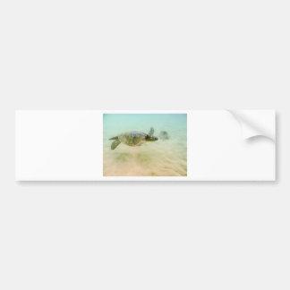 Maui Hi Beach Turtle 2014 Bumper Stickers