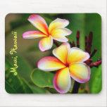 Maui Plumeria Flowers Mousepad