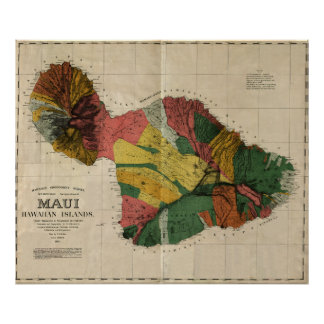 Maui - Vintage Antiquarian Hawaii Survey Map, 1885 Posters