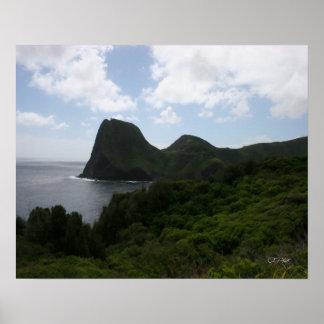 Maui Vista Art Print