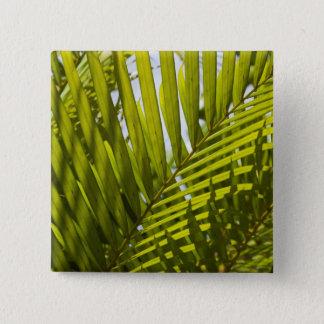 Mauritius, Central Mauritius, Moka, palm 2 15 Cm Square Badge