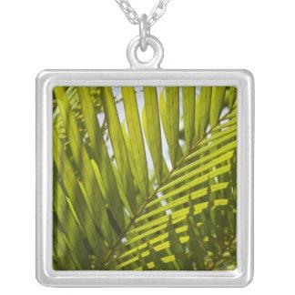 Mauritius, Central Mauritius, Moka, palm 2 Silver Plated Necklace
