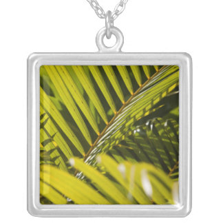Mauritius, Central Mauritius, Moka, palm Silver Plated Necklace