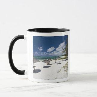 Mauritius, Eastern Mauritius, Belle Mare, Mug