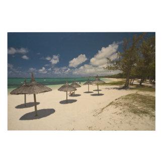 Mauritius, Eastern Mauritius, Belle Mare, Wood Wall Art