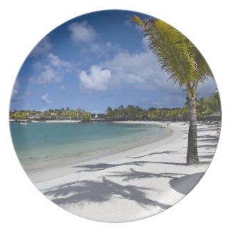 Mauritius, Eastern Mauritius, Trou d' Eau Douce, Plate