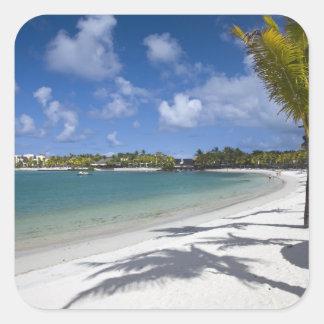 Mauritius, Eastern Mauritius, Trou d' Eau Douce, Square Sticker